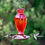 Thumbnail: Daisy Vase Hummingbird Feeder