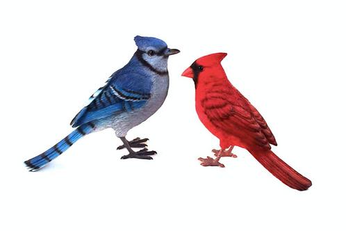 Polyresin Cardinal / Bluejay
