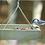 Thumbnail: Green Solutions - Hanging Tray - Small - Gray
