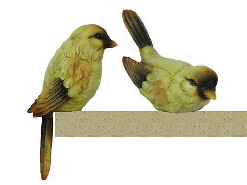 Polyresin Yellow & Brown Finches