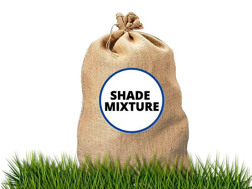 SpeareSeeds - Lawn Seed - Shade Mixture