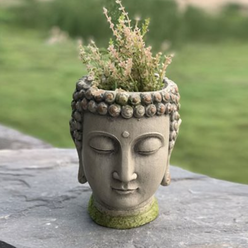 Thai Budha Head Planter