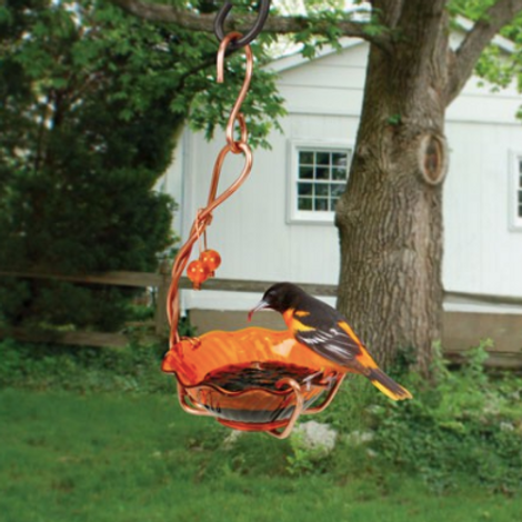 Oriole Jelly Feeder Single Cup