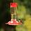 Thumbnail: Ruby Hummingbird Feeder 10 oz