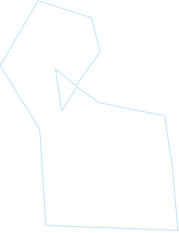 BLUE LINE 1Px.png