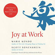Book Review:  Kondo's 'Joy at Work'