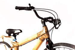 women's City Bike IMG_9412
