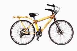Women's City Bike+label