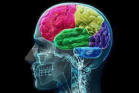 NeurocognitiveTesting.jpeg