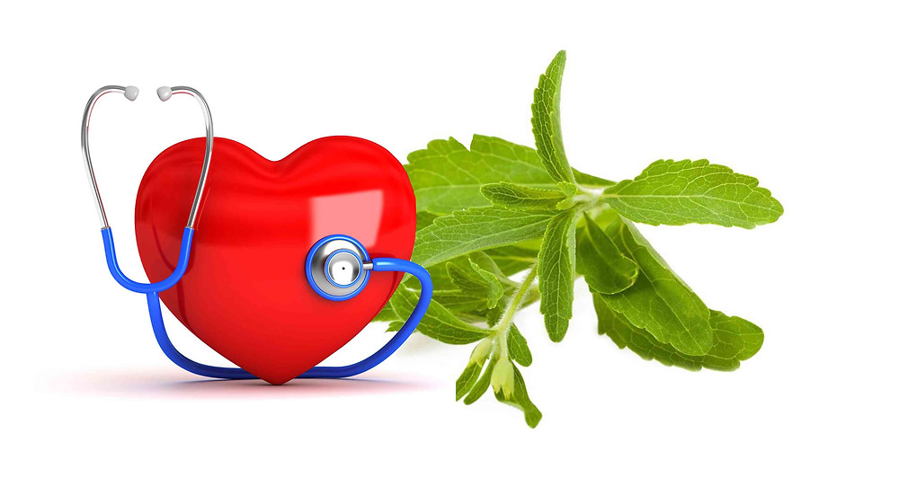 Stevia cardiovascular effect
