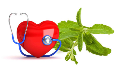Effect of steviol glycosides on cardio-vascular systems