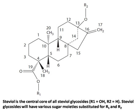 Absorption and distribution of steviol glycosides in animal and human models