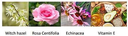 Основные ингредиенты тоника для лица.jpg