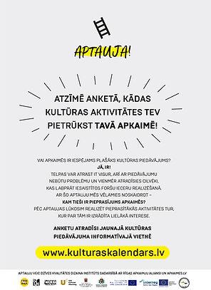 Plakats_Aptauja-04.jpg