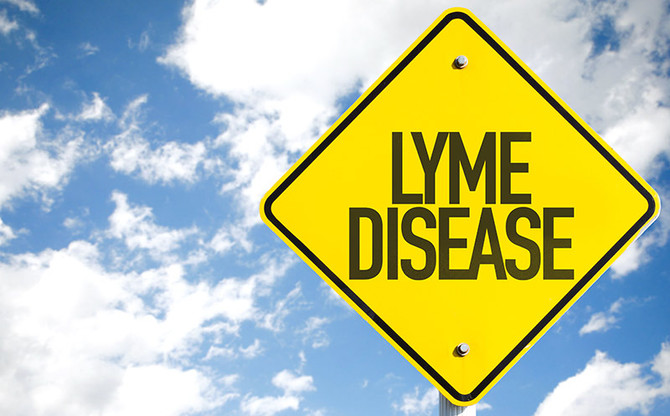 Massage Relief for Lyme Disease