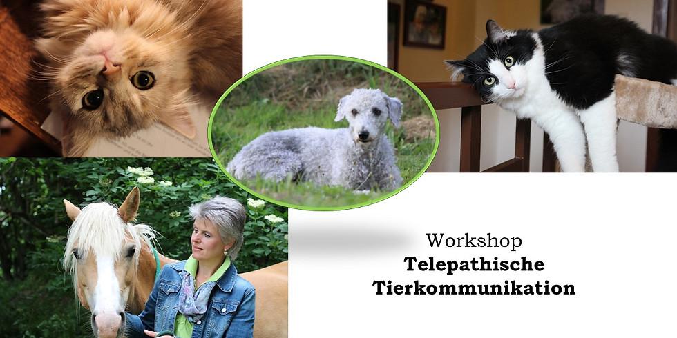 Telepathische Tierkommunikation