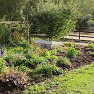 Gemüse- und Nutzgarten