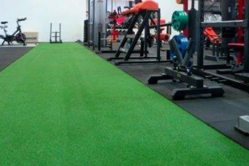 Gym Grass
