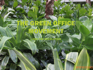 The Green Office Movement