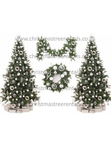 Christmas Rental Package B