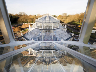 First Look at Kew Garden's Renovated Temperate House