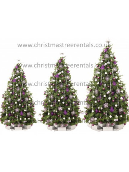 Christmas Rental Package C