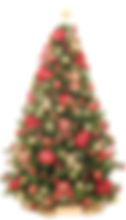 Christmas trees for events and parties
