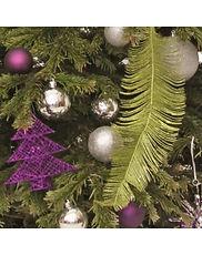 Christmas Tree Rentals