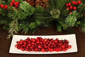 Christmas Decoration Rental