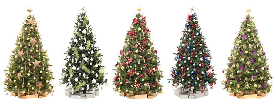 Christmas Tree Rentals Services