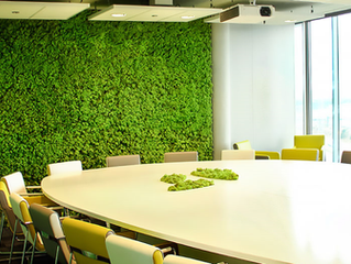 All About Biophilia