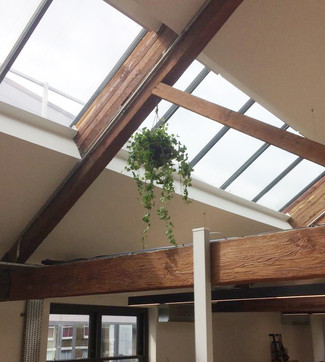 Hanging Baskets for an Urban Office Space