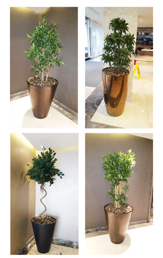 Brief 11: To create a subtle yet premium plant displays for a high-end property