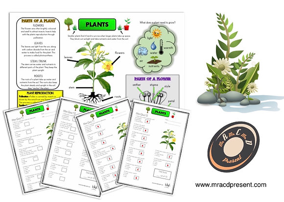Plants (Year 3) - Knowledge Organiser and Mini-Quizzes