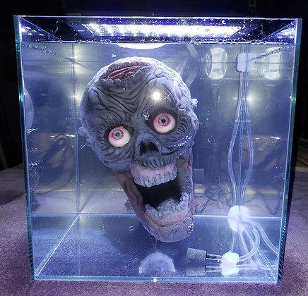 Zombie Aquarium