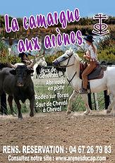 LA CAMARGUE AUX ARENES.jpg