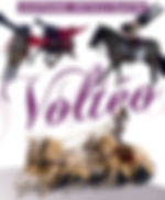 spectacle-equestre-volteopg.jpg