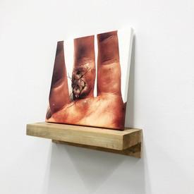 "Jake Miller Chicks Dig Scars Inkjet print, white pine, plywood, motor oil, WD-40, hardware 28"" x 10"" x 21"" 2021"