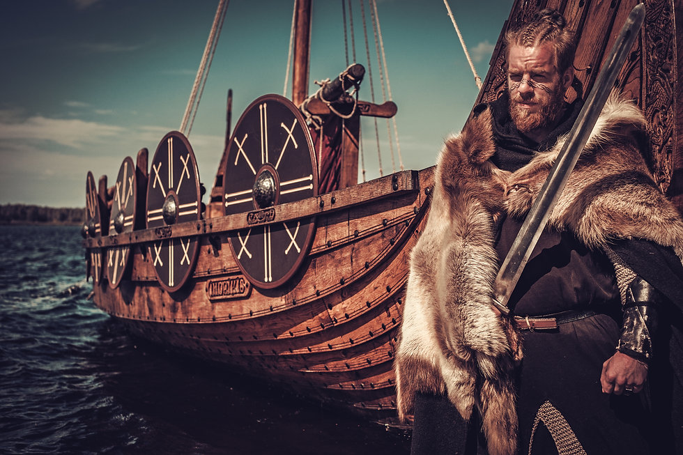 Viking warrior with sword and shield sta