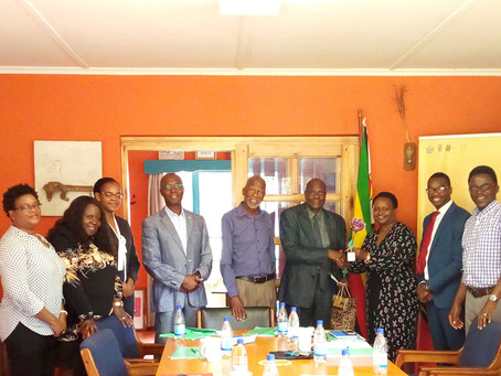 Culture Fund of Zimbabwe Trust Appoints New Board Chairperson