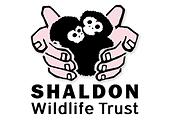 shaldon logo.png
