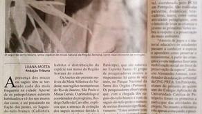 ATENÇÃO DE MÍDIA PARA dos Saguis-da-serra