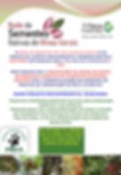 apresentação_rede_mg_copy_3.jpg
