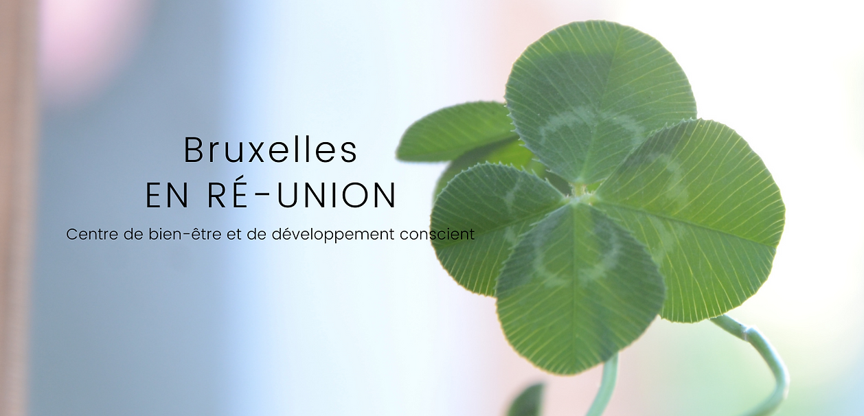 BXL EN RÉ-UNION (19).png
