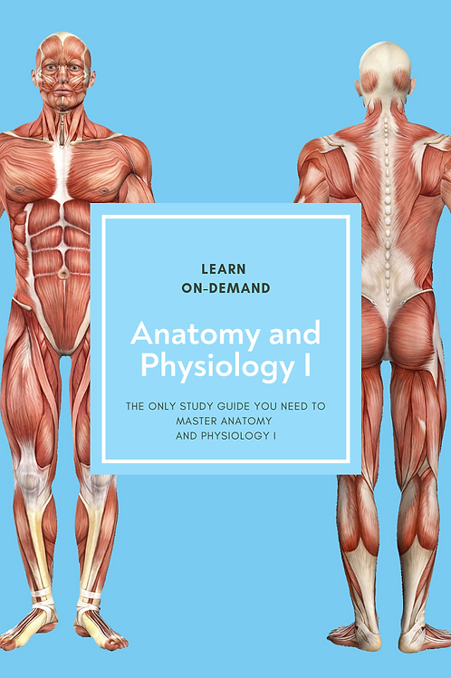 Learn College Anatomy and Physiology I