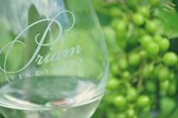 Commercial- Priam Vineyards