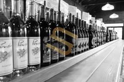 Winery- Long Island NY