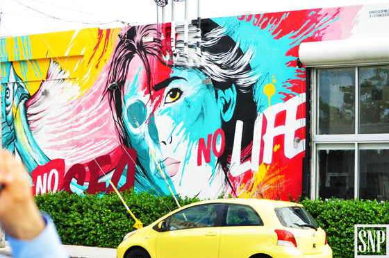 2016 ULI Florida Summit- A Tour of the Wynwood Art District & The Miami Design District