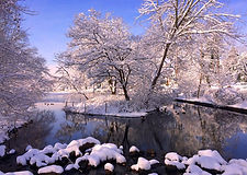 Marvin Makofsky_Baxter Pond Winter.jpg