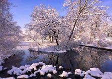 Marvin Makofsky_Baxter Pond Winter.jpg